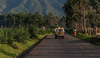 Rwanda gorilla operators
